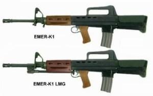 EMERK assault rifle