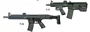 Safir T-17 Assault Rifle